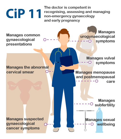 Infographic of CiP 11