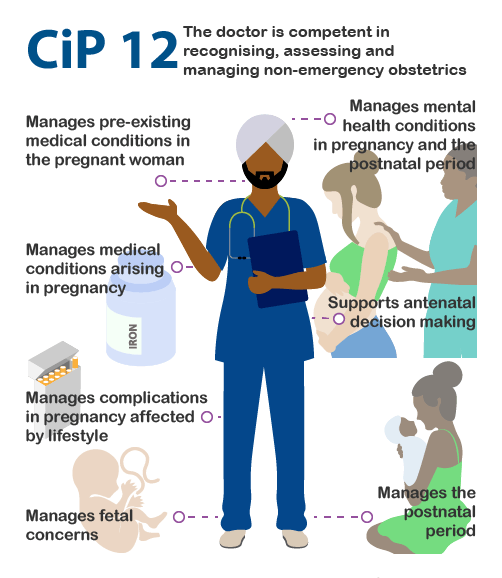 Infographic of CiP 12