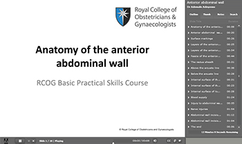 Powerpoint slide showing title 'Anatomy of the anterior abdominal wall'.