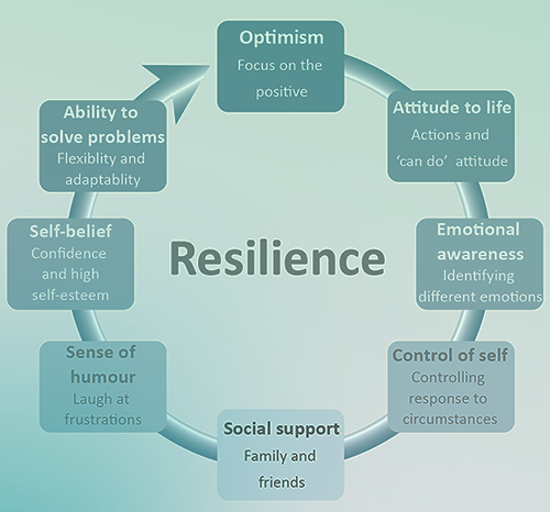 Resilience Flow Chart illustration.
