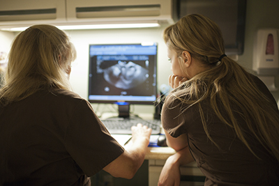 Supervisor demonstrating to trainee how to use ultrasound equipment