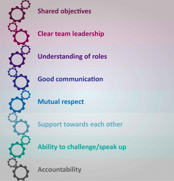 Illustration of cogs and words like shared objectives, clear team leadership and mutual respect